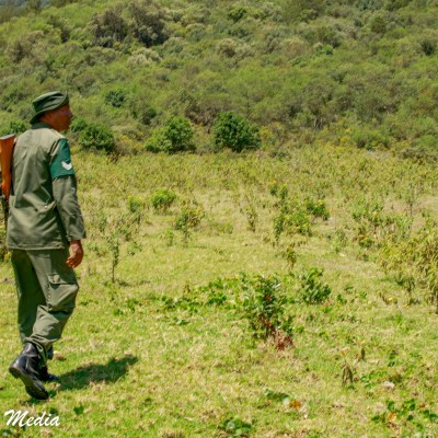 Our guide on our walking safari in Arusha National Park