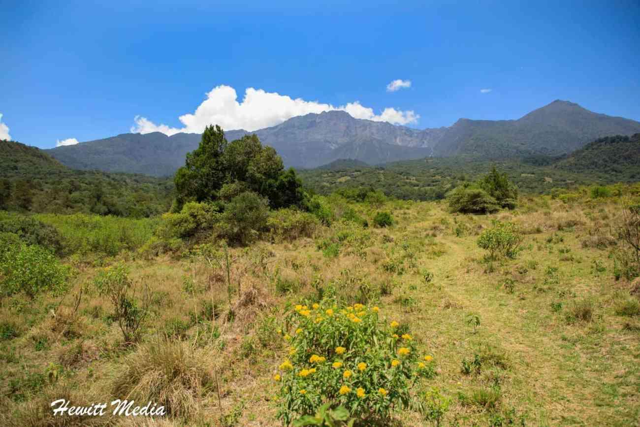 Arusha National Park-3941