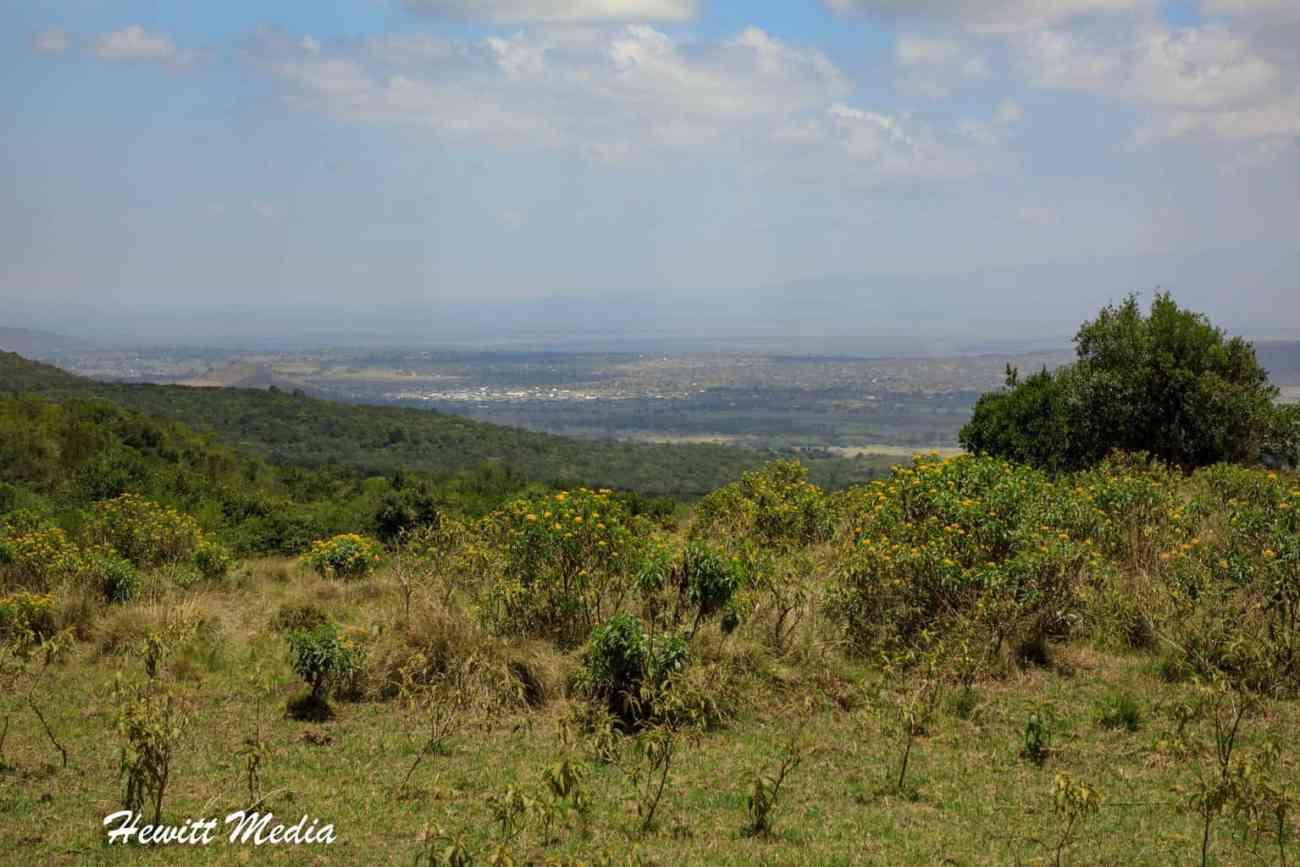 Arusha National Park-3945