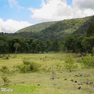 On walking safari in Arusha National Park