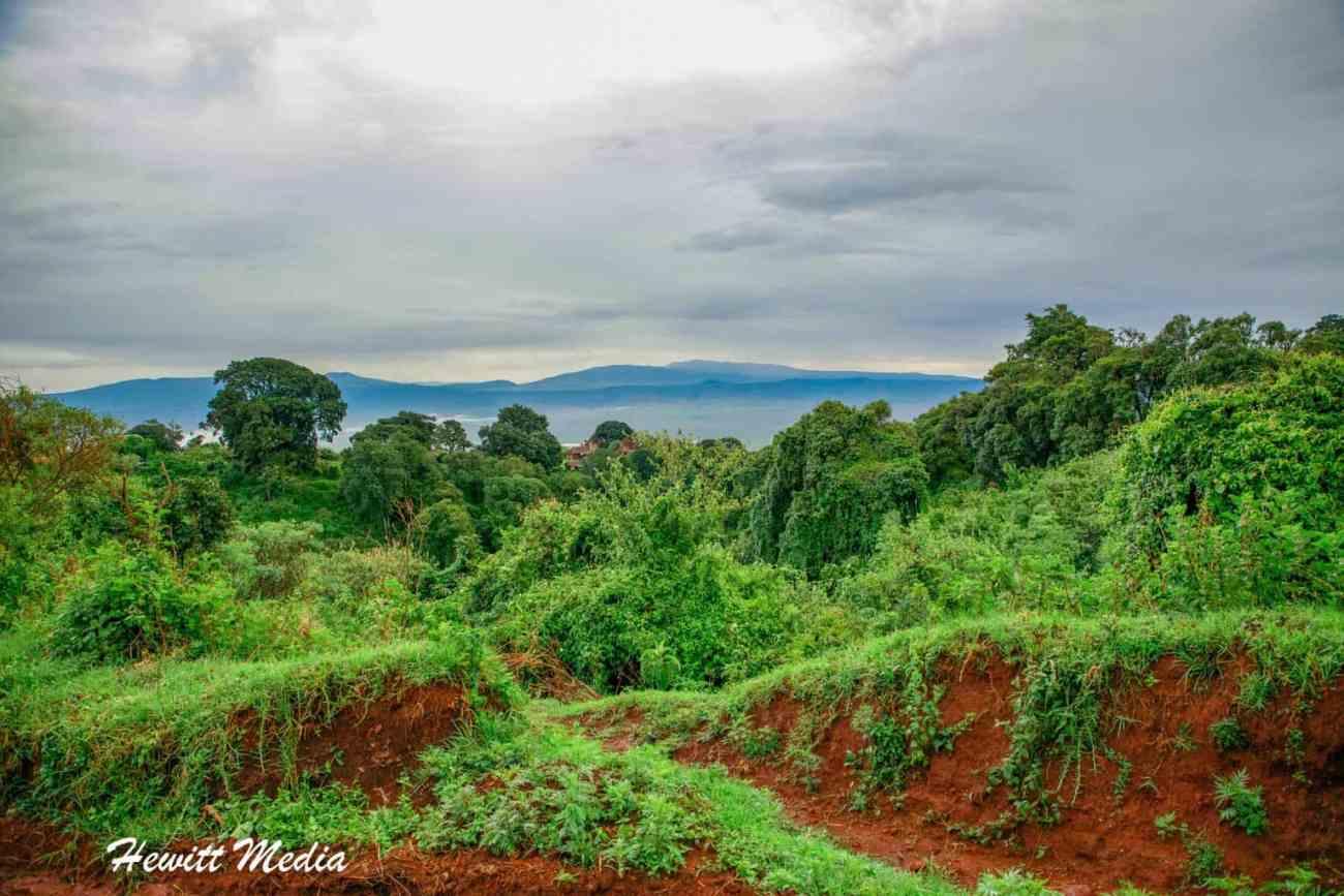 Ngorongoro Crater-1991