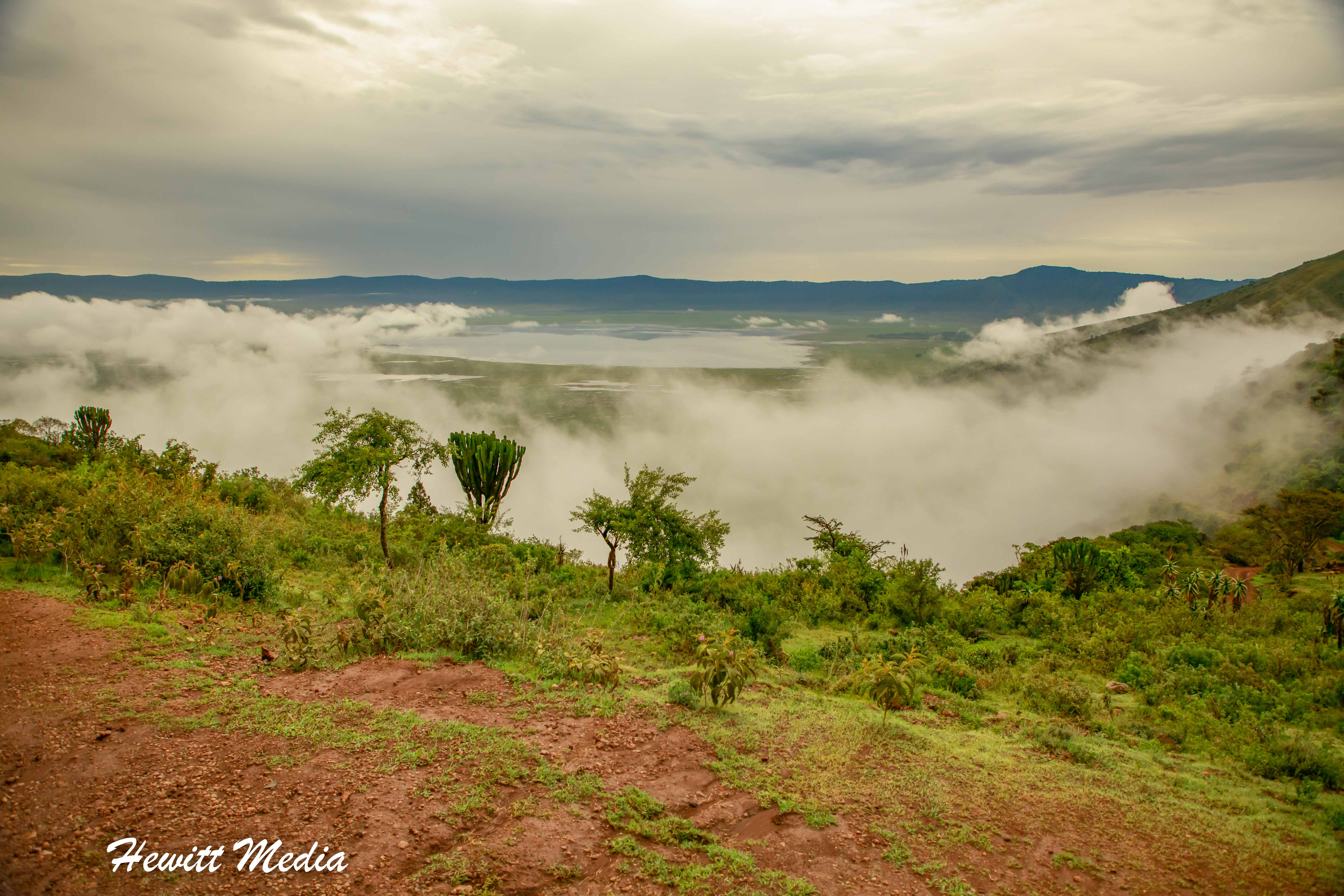 A view from the top of the Ngorongoro Crater