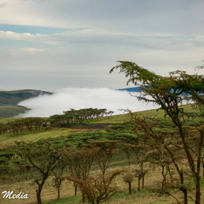A view of the Ngorongoro Crater
