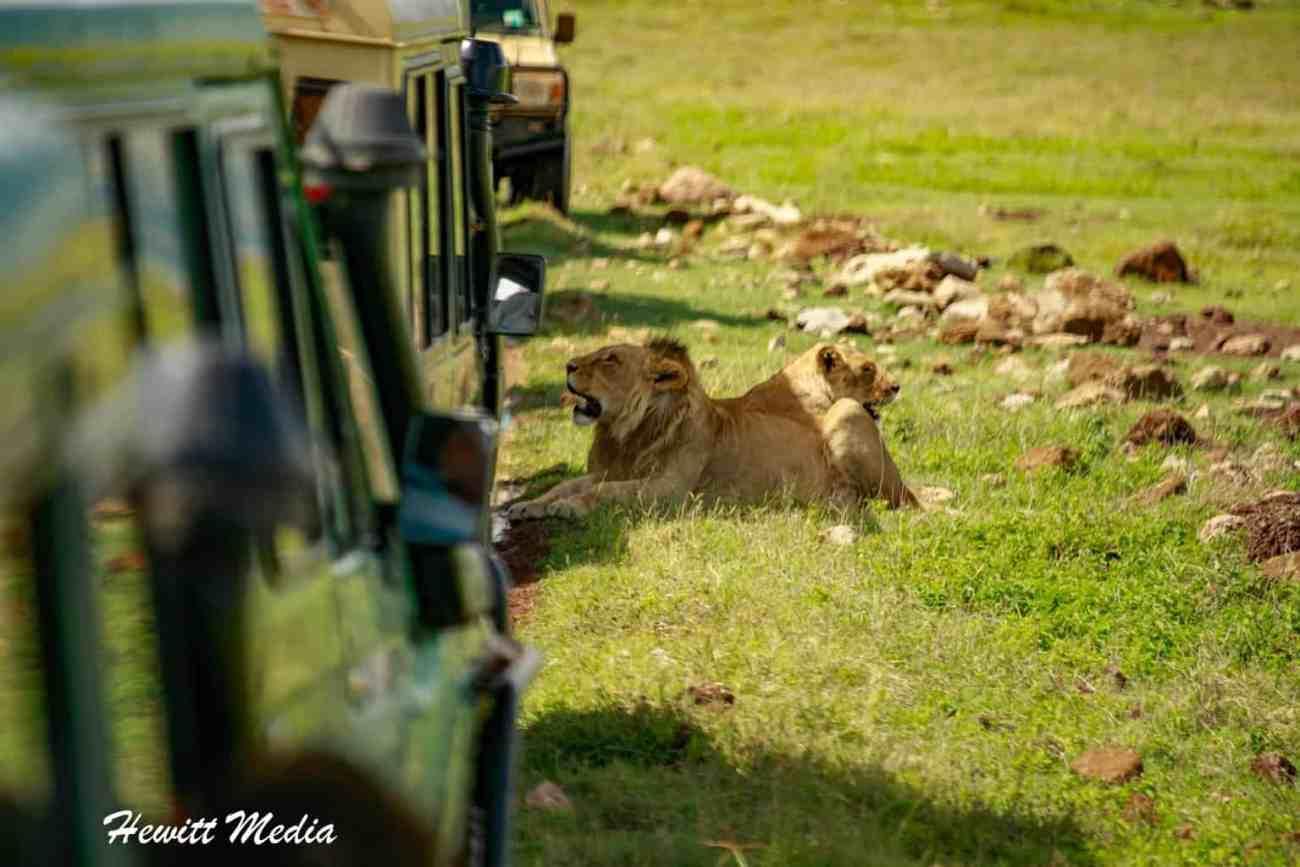 Ngorongoro Crater-2410