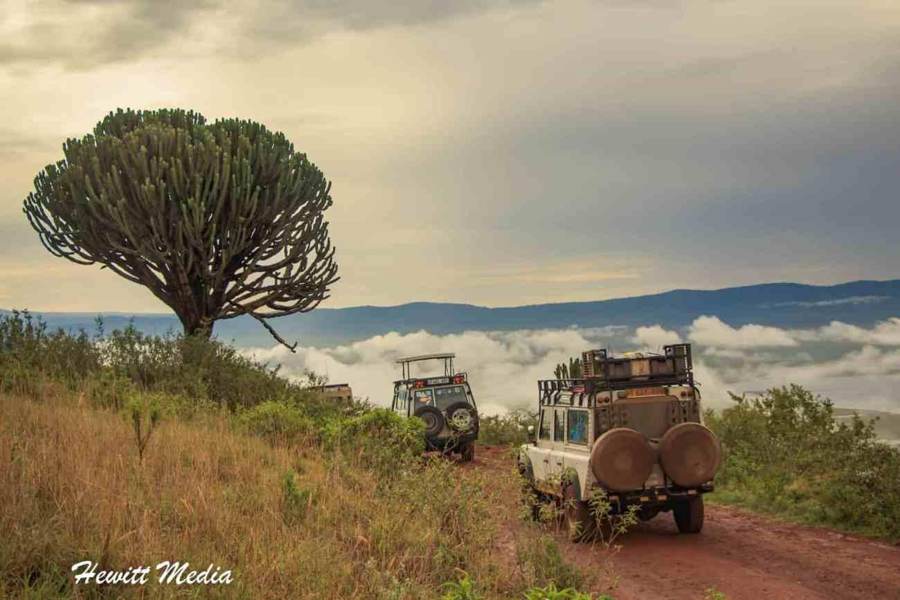 Ngorongoro Crater-27