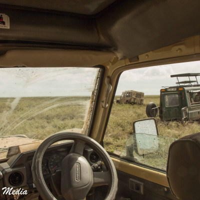 Vehicles stuck in the Serengeti National Park