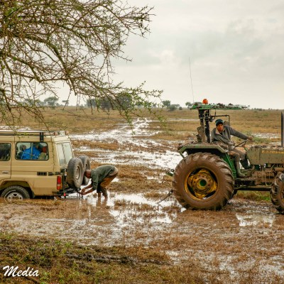 A vehicle stuck in the Serengeti National Park