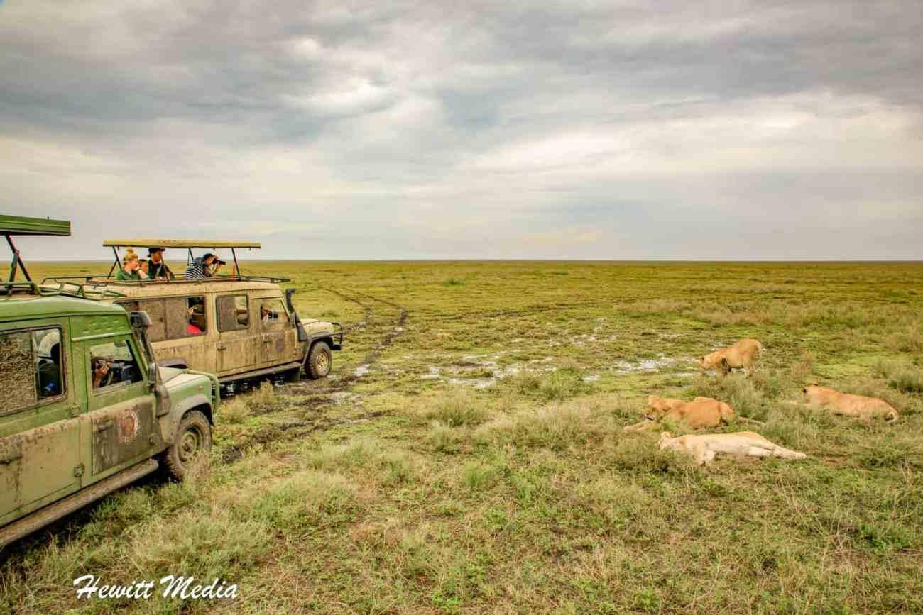 Serengeti-1826