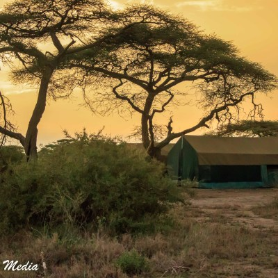 Our campsite in the Serengeti National Park