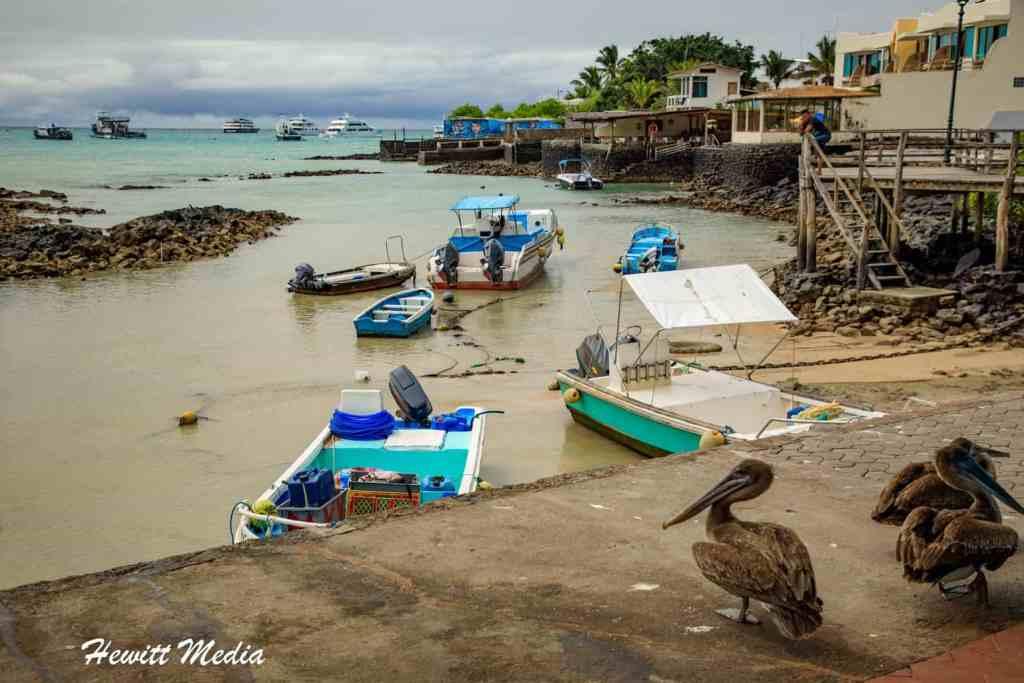 Top 2021 Travel Destinations - The Galapagos Islands