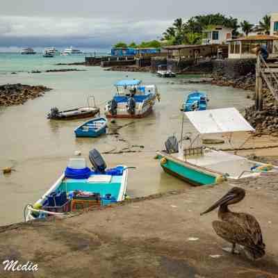 Puerto Ayora on Santa Cruz Island.