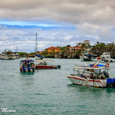 Boats in Puerto Ayora on Santa Cruz Island.