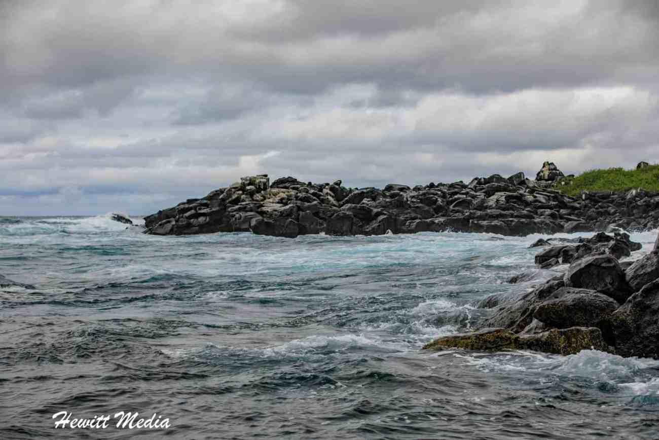 Galapagos-0301.jpg