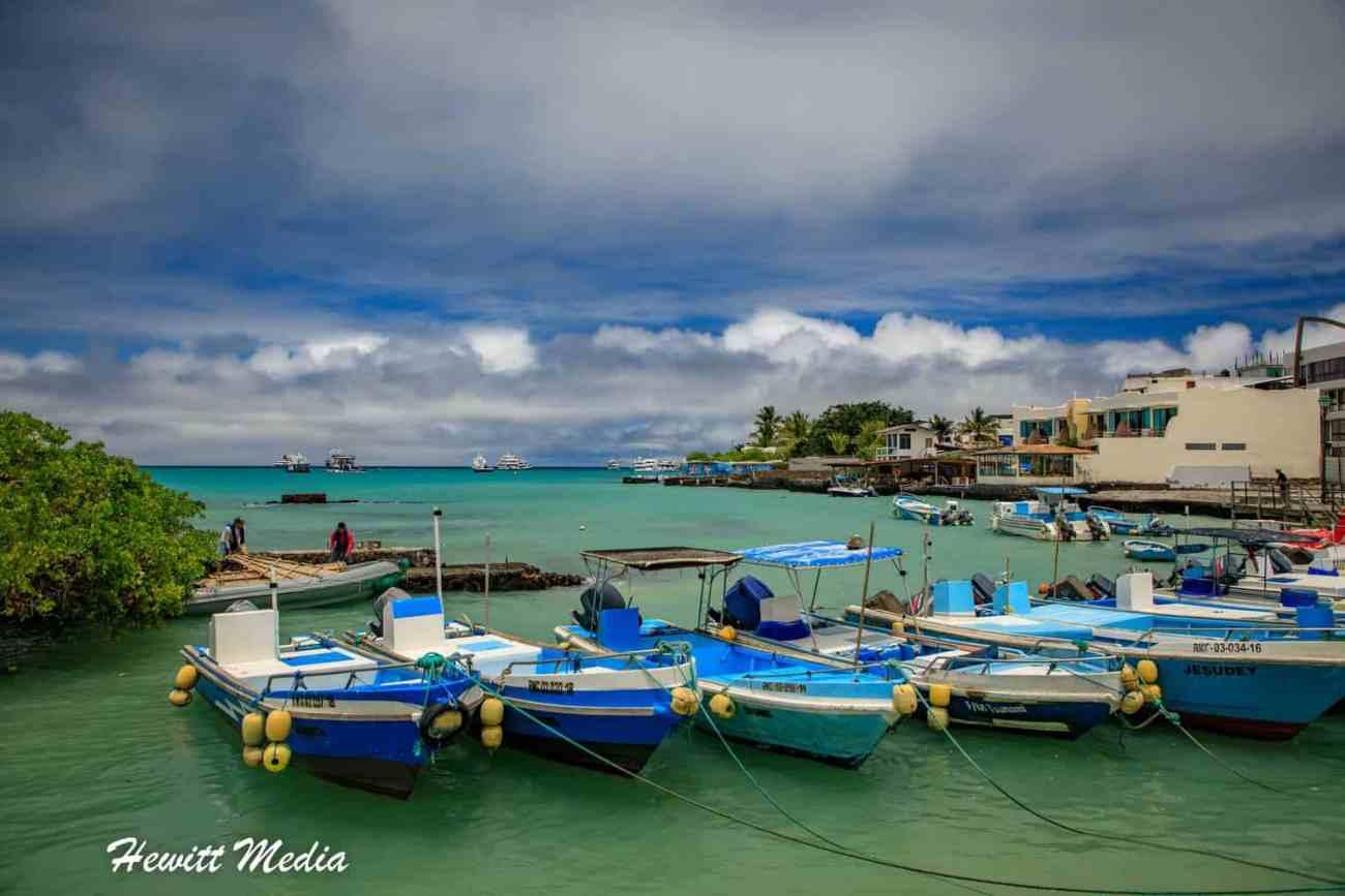Galapagos-9064.jpg