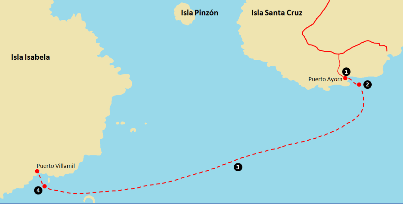 Getting to Galapagos - Santa Cruz to Isabela.png