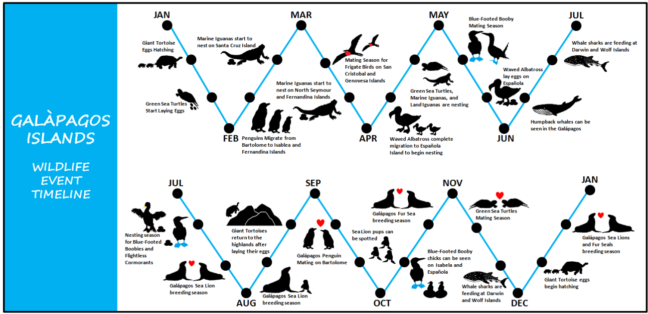 Wild Life Event Timeline