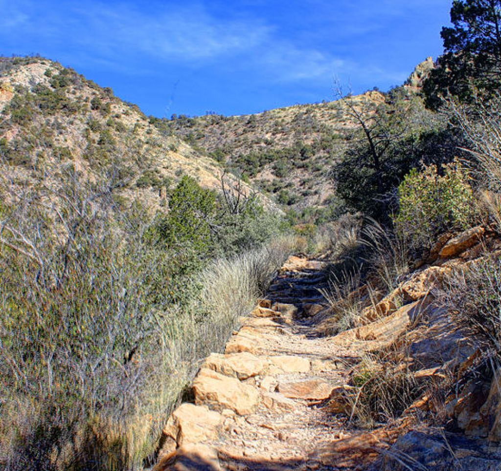 Lost Mine Trail.jpg