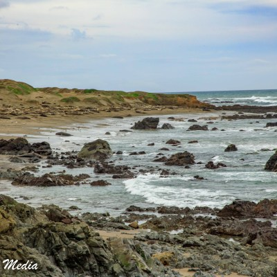 View of the beach at Point Piedras Blancas