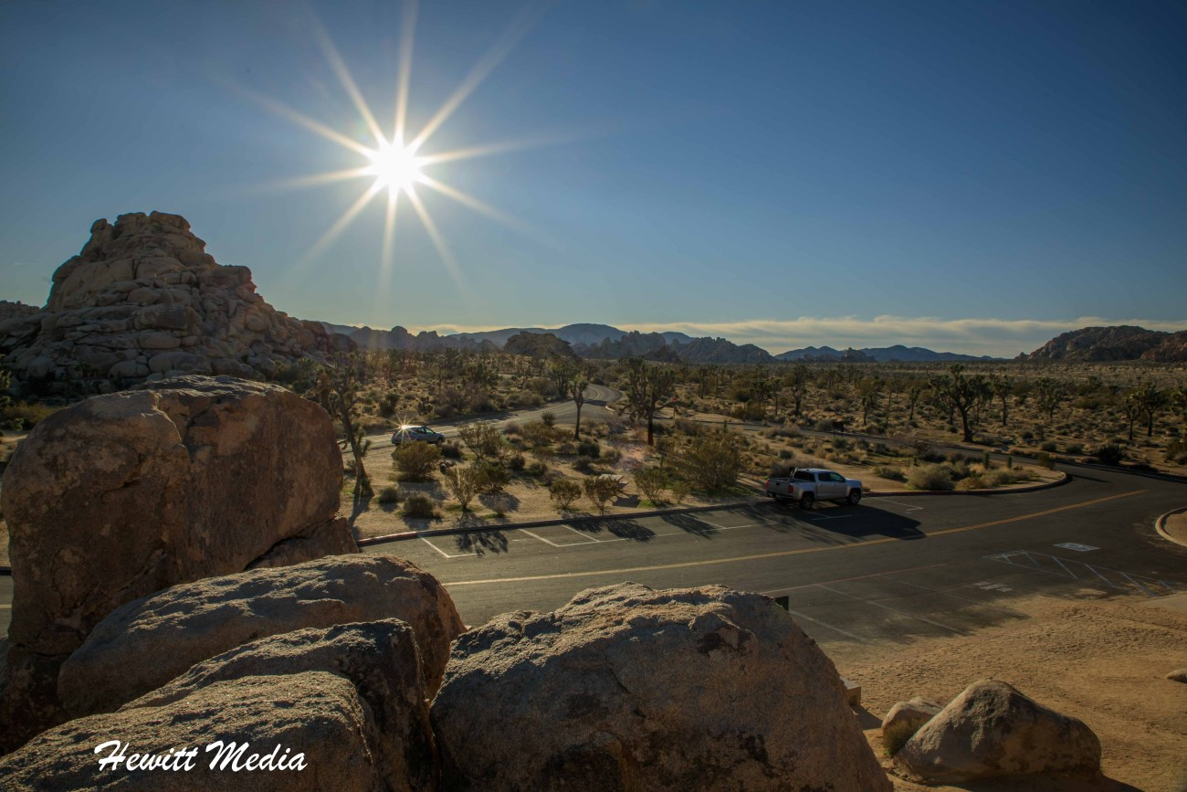 Joshua Tree National Park-1052