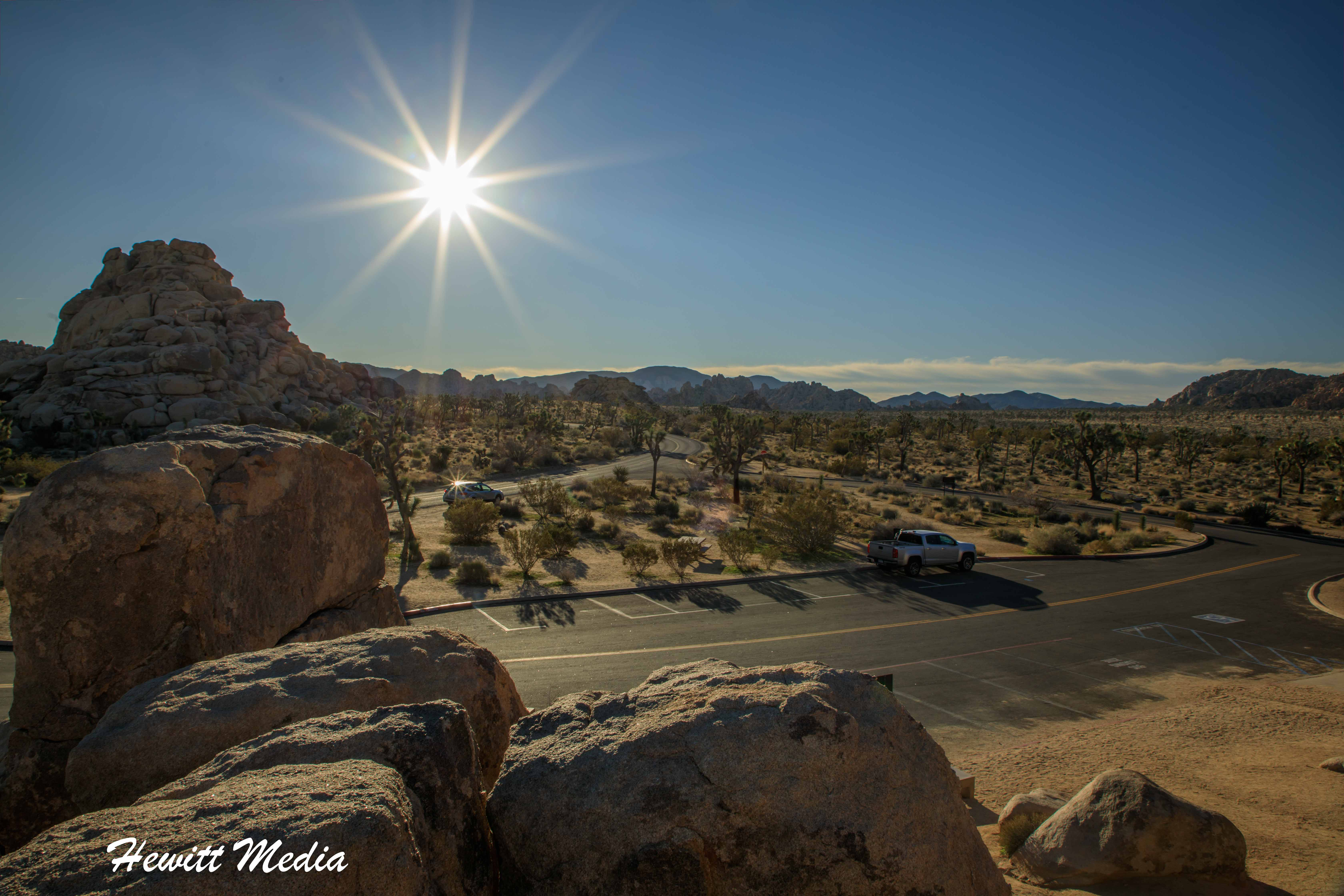Joshua Tree National Park at sunrise