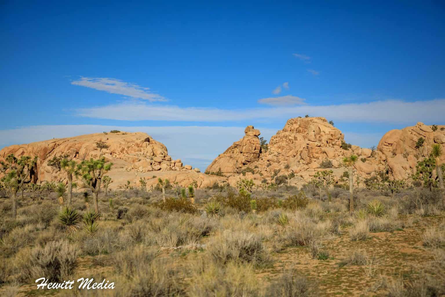 Rock formations inside Joshua Tree National Park