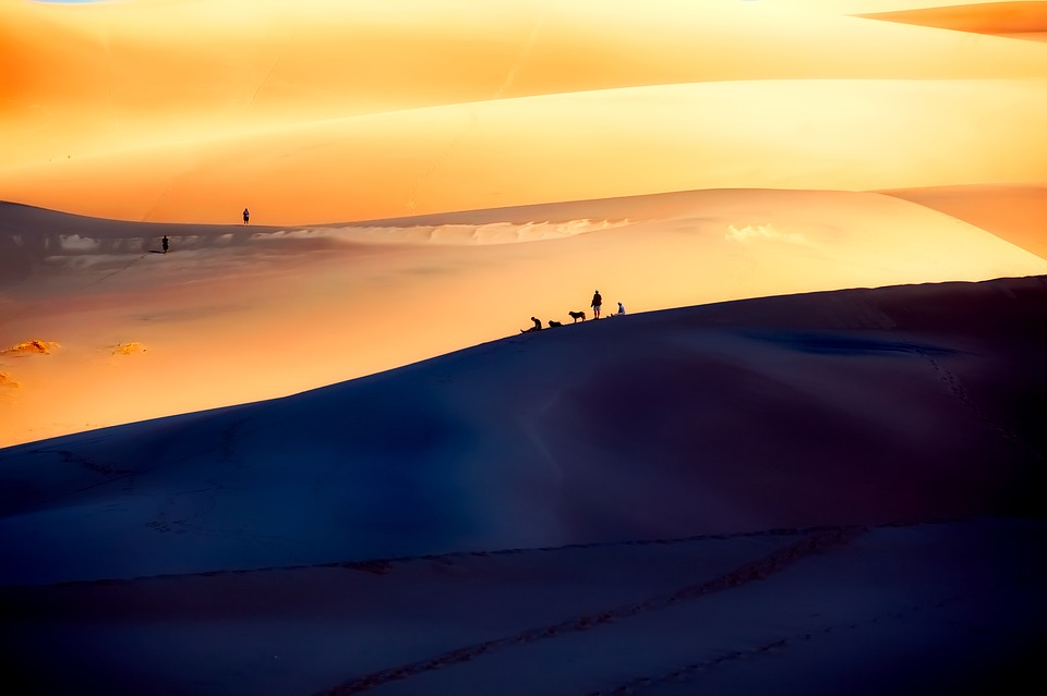 high dune - great sand dunes.jpg