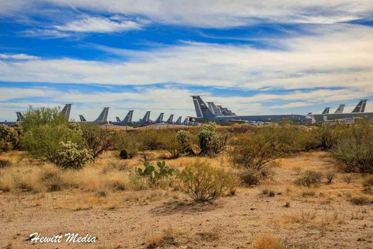Saguaro National Park-6017