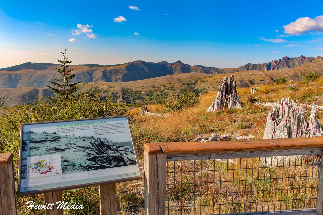 Mount St Helens-4408