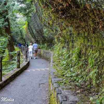 Hiking in Multnomah Falls area