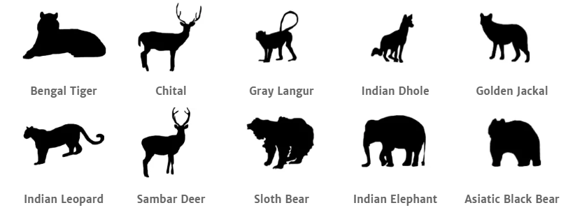 Jim Corbett National Park animals.png