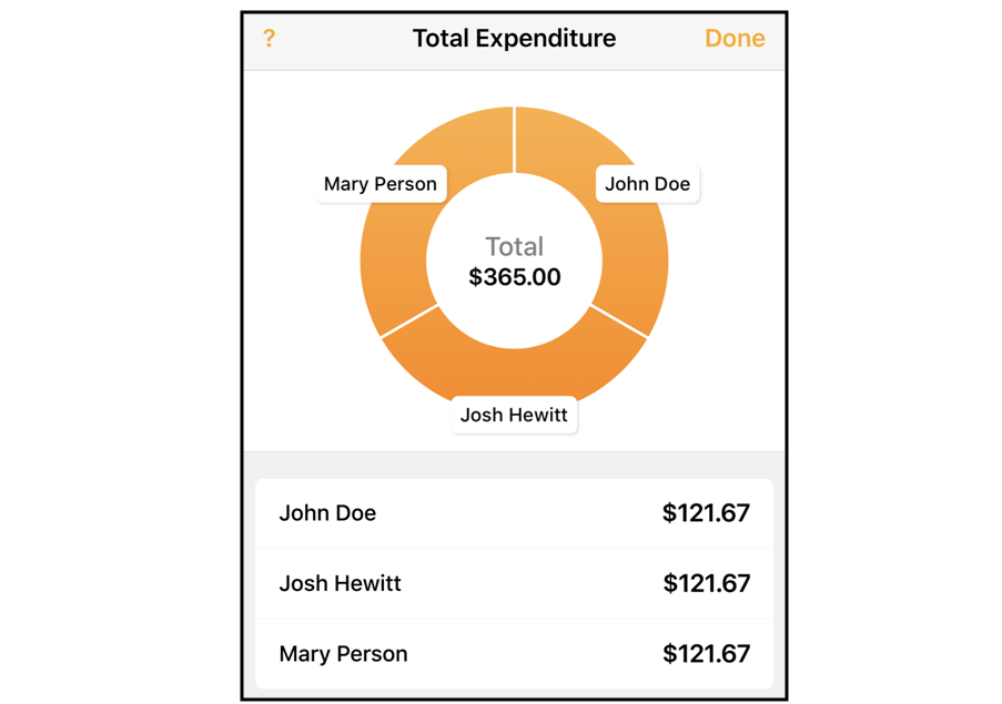 Monitor Expenses As You Travel.png
