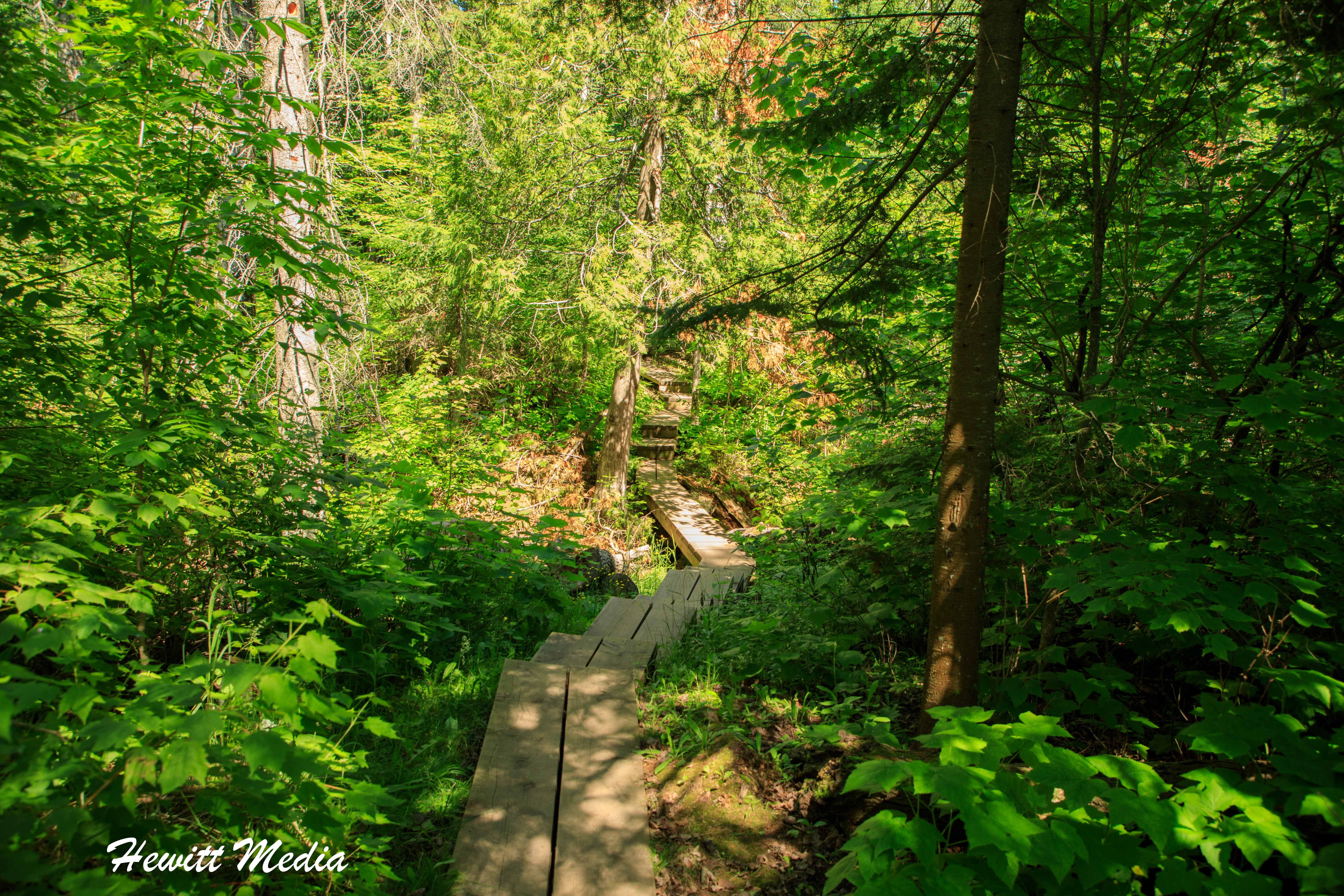 Hiking trail to the sea caves in the Apostle Islands
