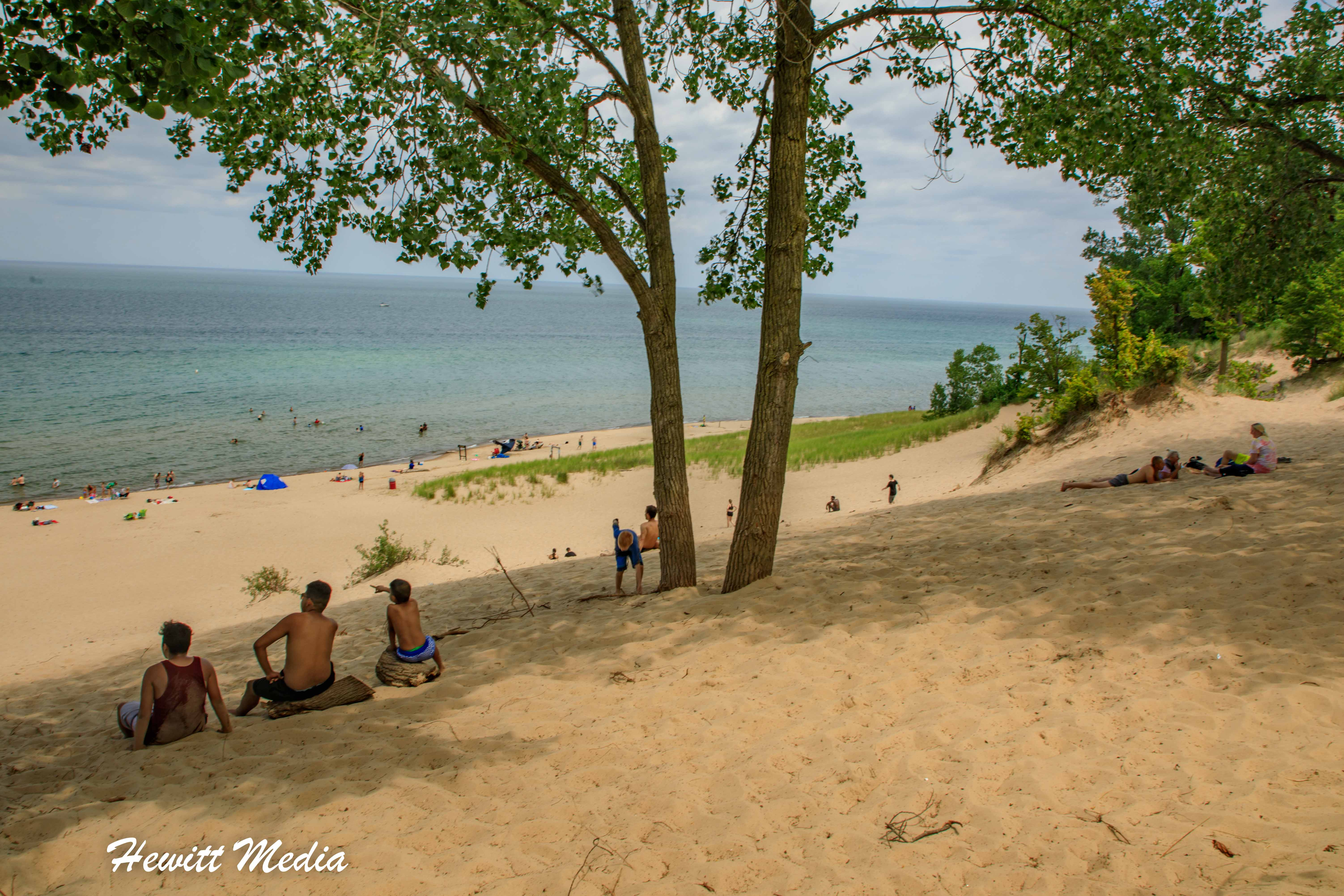 The dunes in Indiana Dunes State Park