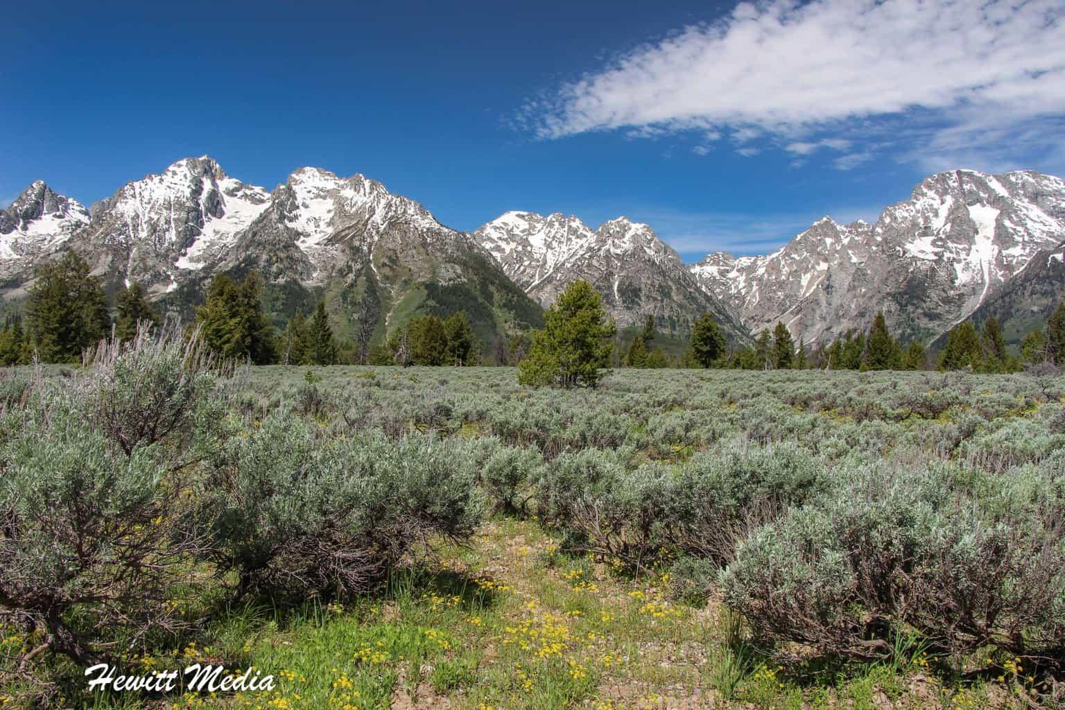 The Grand Teton Range
