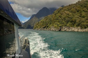Milford Sound Visitor Guide