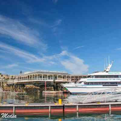 The Marina in Bar Harbor