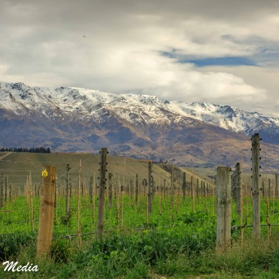 The Central Otago Valley