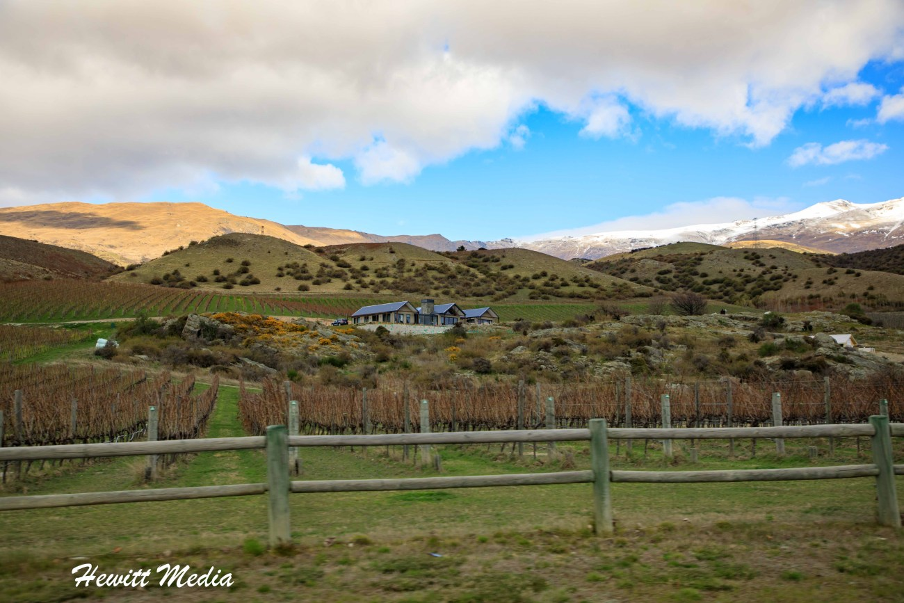 Central Otago Wine Tour-3804