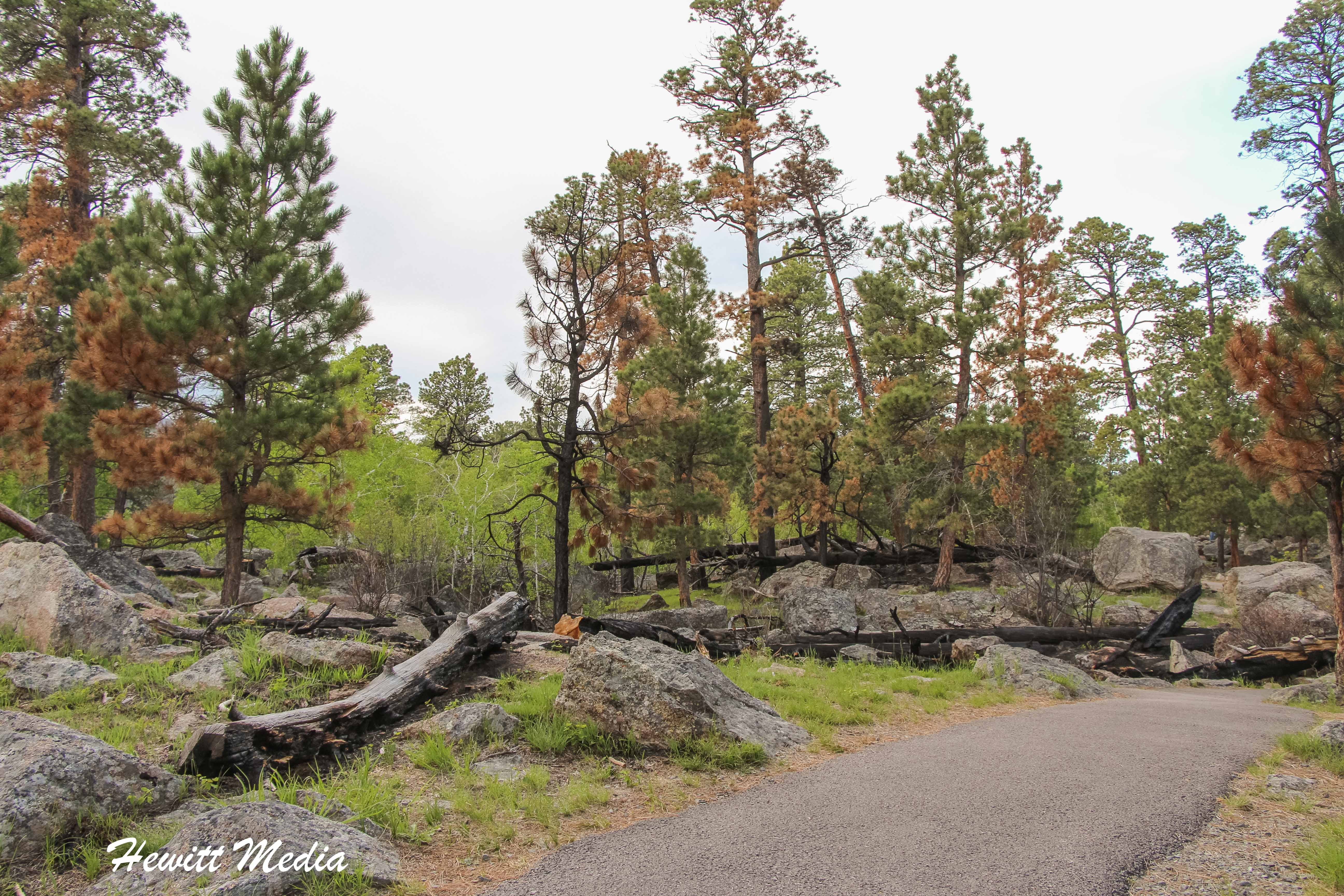 Hiking Trail in Devil's Tower National Monument