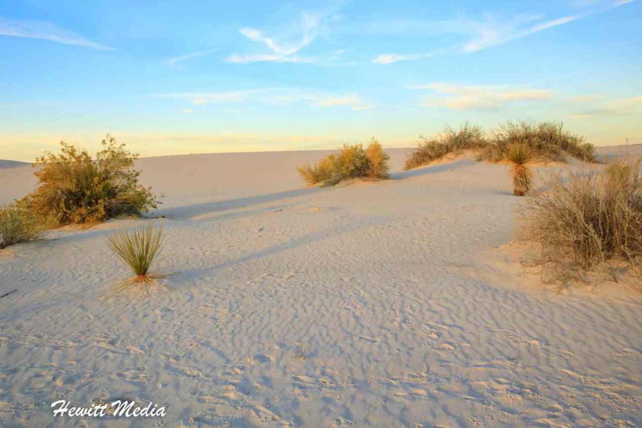 White Sands National Monument-5834