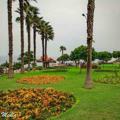 Lima-8043