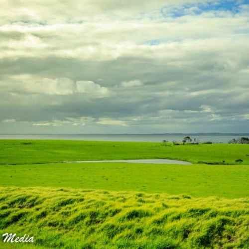 Philip Island-3088