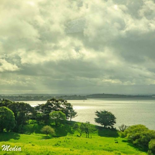 Philip Island-3089