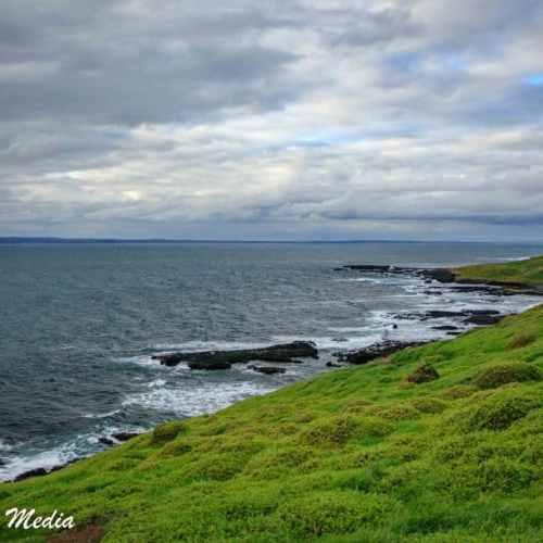 Philip Island-3114