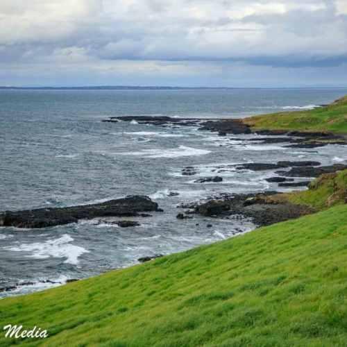 Philip Island-3118