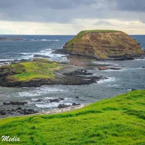 Philip Island-3121
