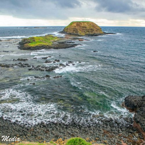 Philip Island-3131