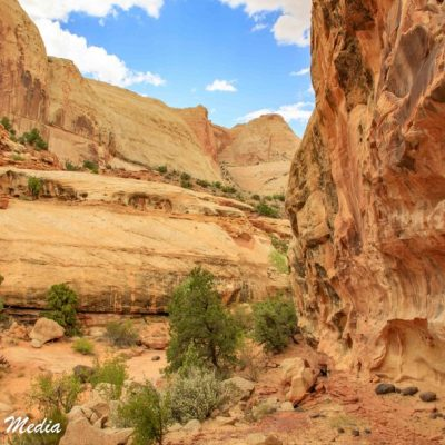 Capitol Reef National Park-1196