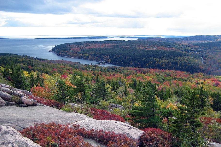 Acadia National Park Autumn