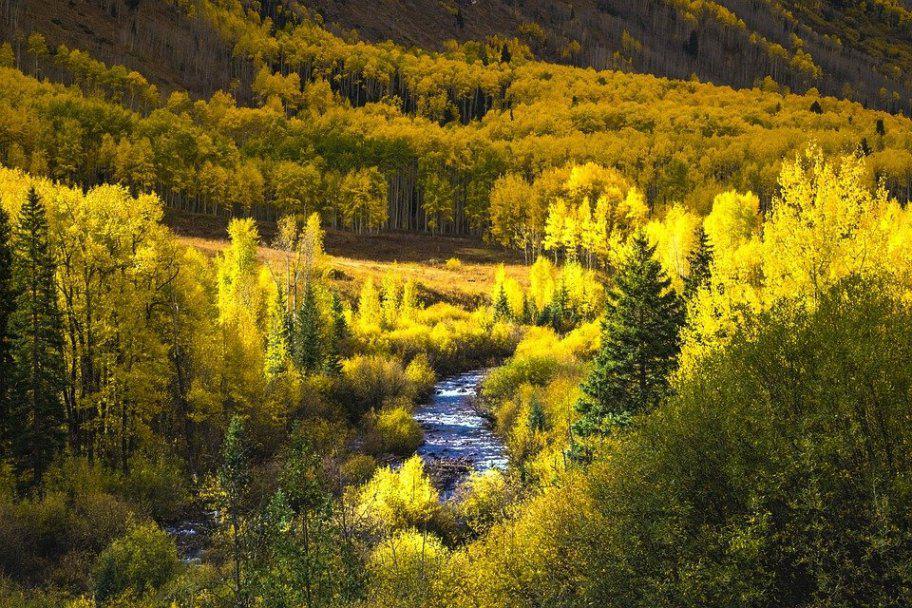 Rocky Mountain National Park Autumn